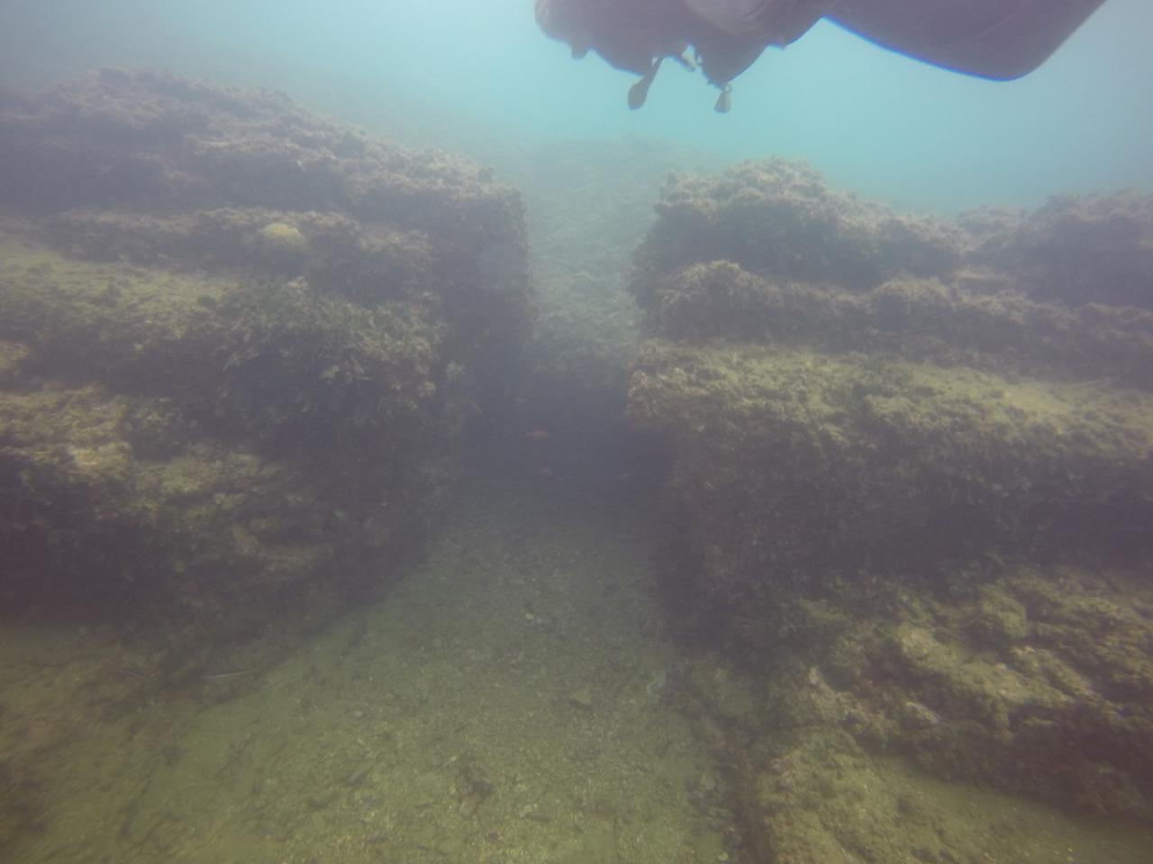 Sortie archéologique de Baïa